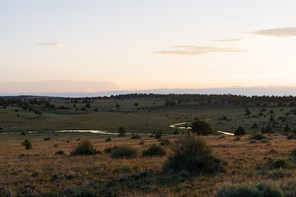 The beautiful desert landscape of Southeastern Oregon just outside of Steens Mountain around sunrise.